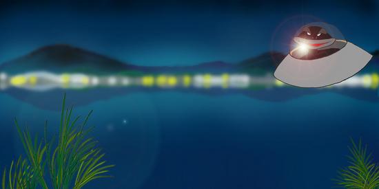 夜のカエル沼 a.jpg