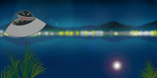 夜のカエル沼 b.jpg